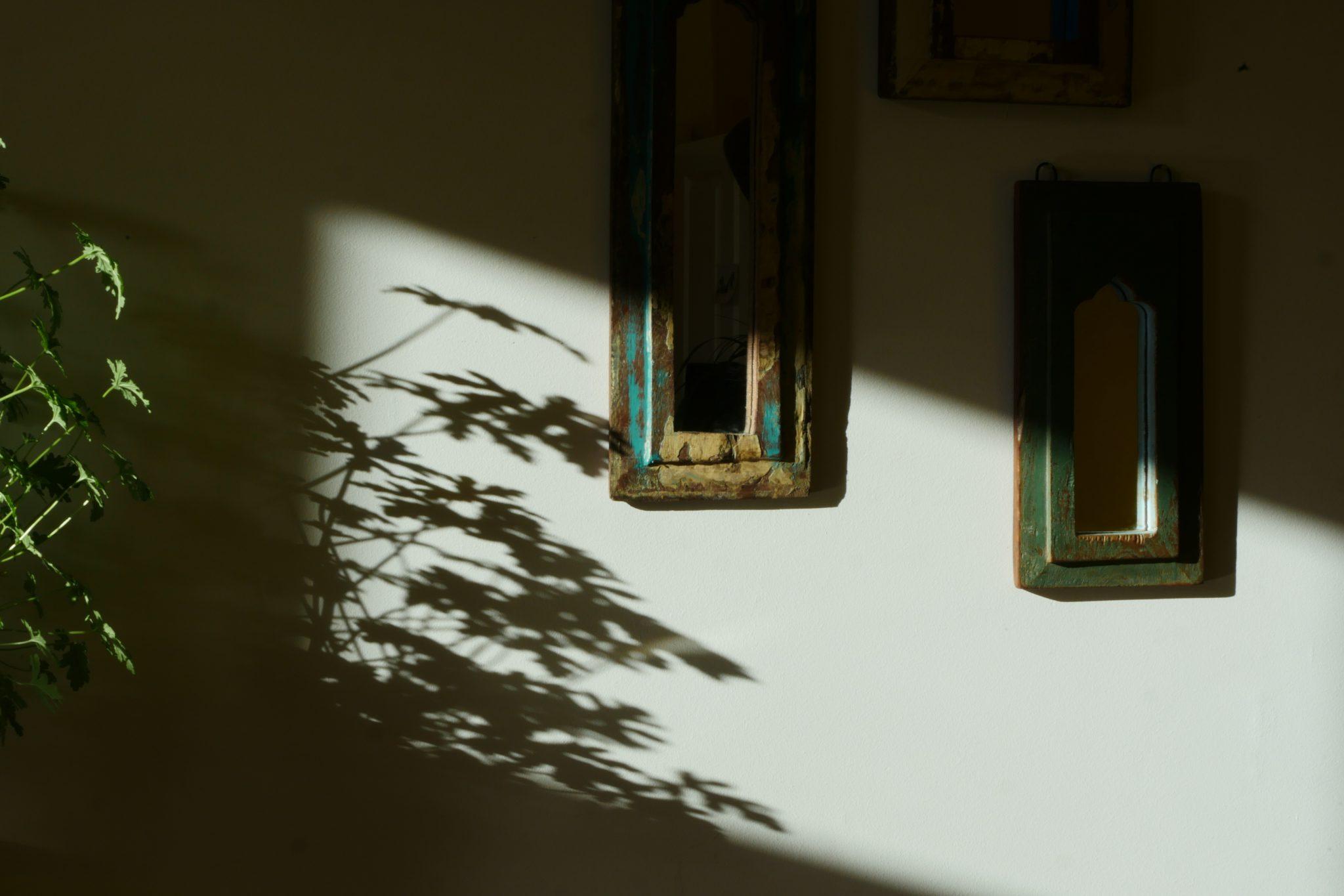 Der Schatten des Lebens